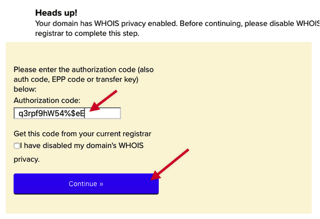 type or paste authorization code into the field and click Continue
